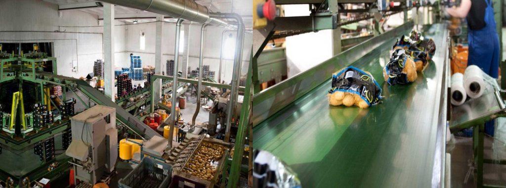 Работа для мужчин на заводе упаковки овощей в Польше